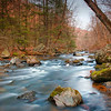 Nature : 6 galleries with 805 photos